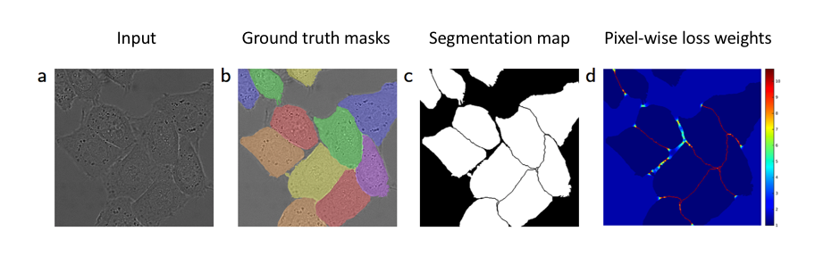 An overview of semantic image segmentation